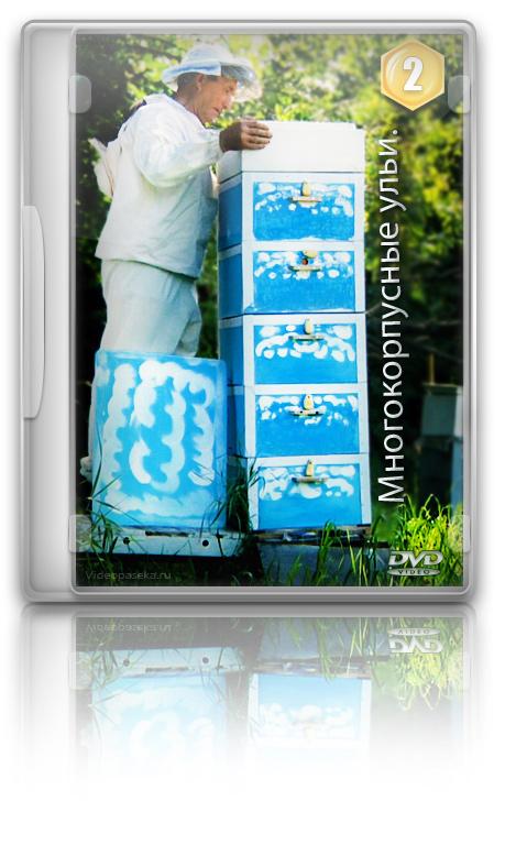 dvd технология изготовления:
